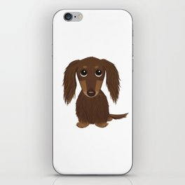 Longhaired Chocolate Dachshund iPhone Skin