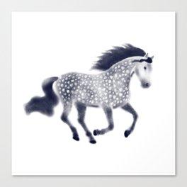 Dapple horse Canvas Print