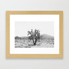 Joshua Trees in the Mojave Desert Framed Art Print
