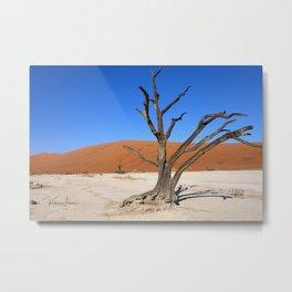 Skeleton tree in Namibia Metal Print