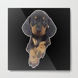 Cute miniature Dachshund Puppy | Gift Metal Print