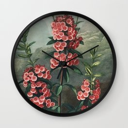The Narrow–Leaved Kalmia from The Temple of Flora (1807) Wall Clock