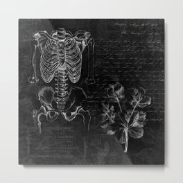 Anatomy Collage  Metal Print