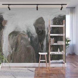 The Falls Wall Mural