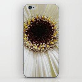 Crowning daisy iPhone Skin