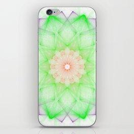 Kyoto iPhone Skin