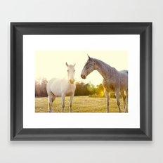Two Horses Fine Art Photography Framed Art Print