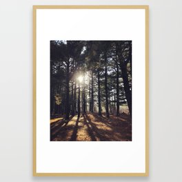 room of refuge Framed Art Print