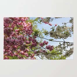 Pink and White Blossoms Rug