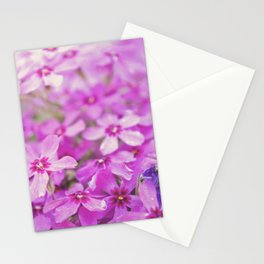 Floral 7 Stationery Cards