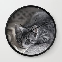 Our kitty on Quebec St. 02 Wall Clock