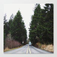 Coastal Byway Canvas Print