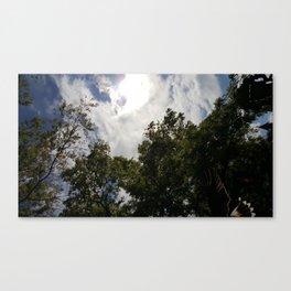 Falcon Flies Overhead Canvas Print