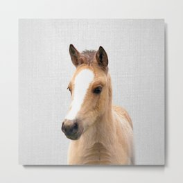 Baby Horse - Colorful Metal Print