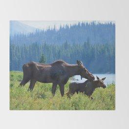 Mother moose & calf at Maligne Lake in Jasper National Park Throw Blanket