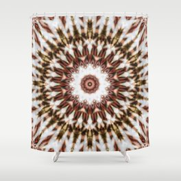 Mandala with intricate details and geometric structure Shower Curtain