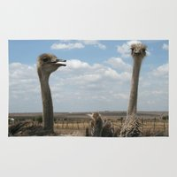 ostrich Area & Throw Rugs featuring Ostrich by wendygray