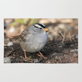 Profile of a White-Crowned Sparrow Rug