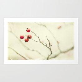 berries Art Print