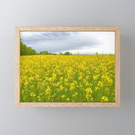 Fields of Flowers in the French Countryside, Dijon, France Framed Mini Art Print