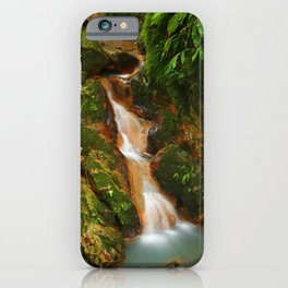 Stream in the forest iPhone Case