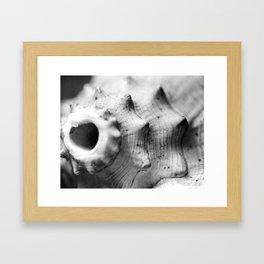 Listen to the Ocean Framed Art Print