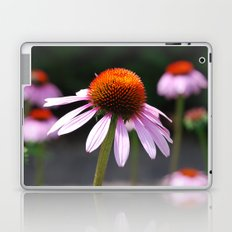 Purple Coneflower  Laptop & iPad Skin