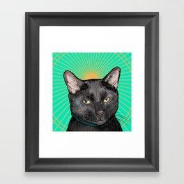 Radiant Sun Cat Framed Art Print