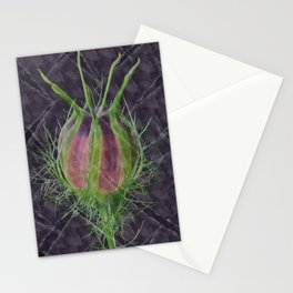 Nigella damascena - the ragged lady Stationery Cards
