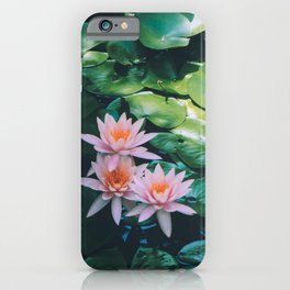 Beauty in the Shadow iPhone Case