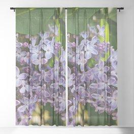 Lilac blooming lilac Sheer Curtain