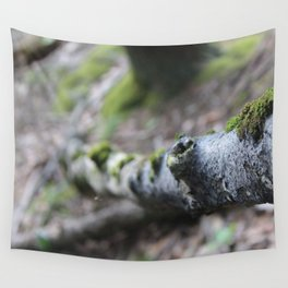 Hiking for photographs Wall Tapestry