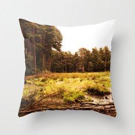waste land Throw Pillow