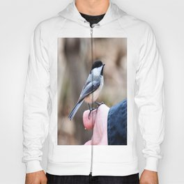 lets feed the birds Hoody