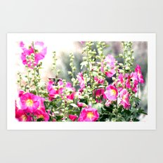 Chuparosa checking out all the Pink Pink Hollyhocks by CheyAnne Sexton Art Print