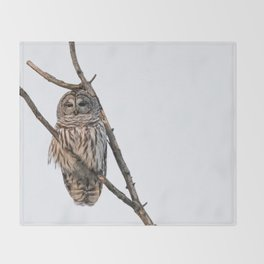 Barred Owl visitor on New Years Eve Throw Blanket