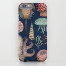 Aequoreus Vita iPhone 6s Slim Case