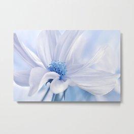 Cosmea flower 118 Metal Print