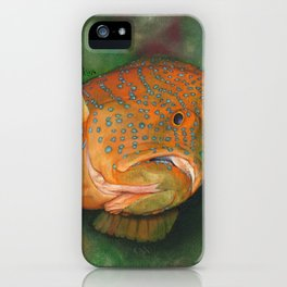 Coral Grouper iPhone Case