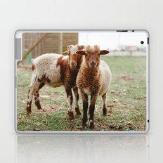 Counting Sheep Laptop & iPad Skin