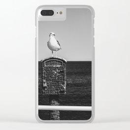 Seagull Takes A Break Clear iPhone Case