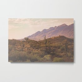 Wild West II Metal Print