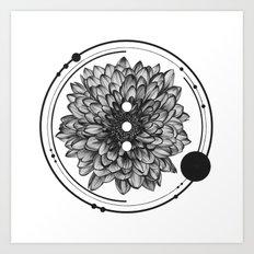 Elliptical I Art Print