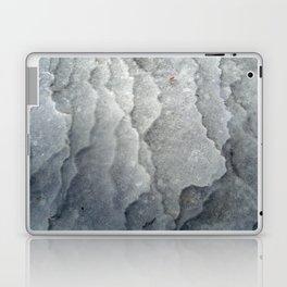 Ice-capades Laptop & iPad Skin