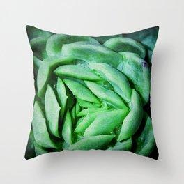 succulent cactus III Throw Pillow