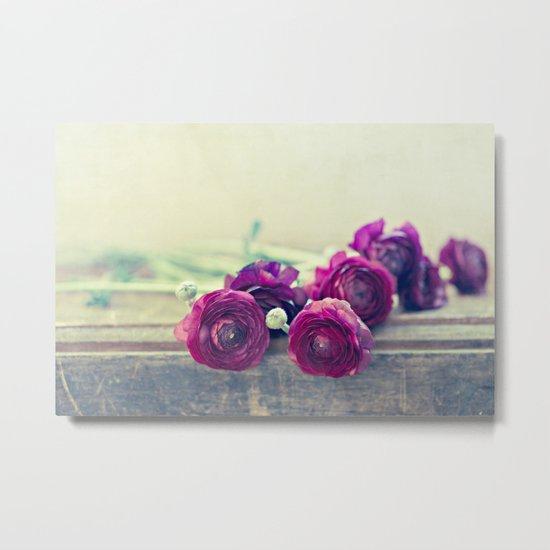 Like Royalty (Purple Ranunculus)  Metal Print