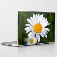 daisies Laptop & iPad Skins featuring Daisies by Rose Etiennette