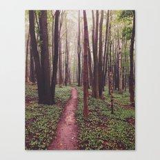 The Future Awaits, The Path Lies Before You Canvas Print