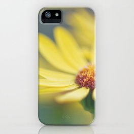 Softness iPhone Case