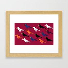 Multi-coloured birds Framed Art Print